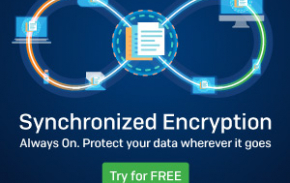 safeguard encryption 8 web banner 300x250