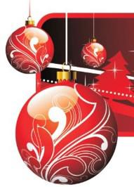 Frohe Weihnachten Albanisch.Frohe Weihnachten Schwarz Computer Systeme Gmbh It Systemhaus